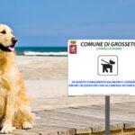 Cani in spiaggia a Principina a Mare